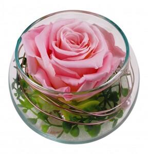 Long Life Rose Curly Kugelglas 7 cm, rosa