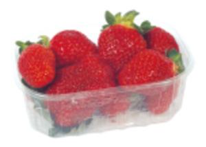 Deutschland/Niederlande Erdbeeren