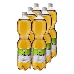 Stardrink Ginger Ale 1,5 Liter, 6er Pack