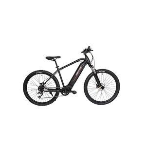 Maxtron E-Mountainbike MT-15X