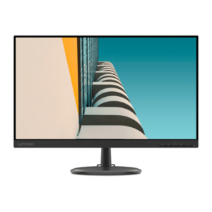 "LENOVO     23,8"" (60,45 cm) Monitor D24-20"