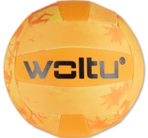 WOLTU Volleyball
