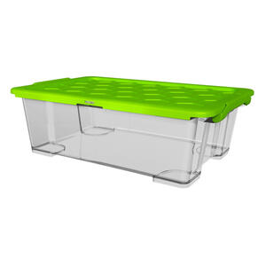 Rotho Box mit deckel  1008005519Ws  Grün