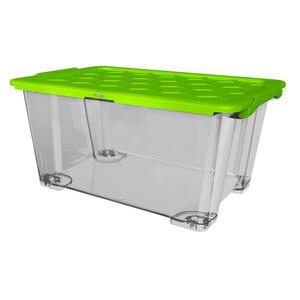 Rotho Box mit deckel  1008105519Ws  Grün