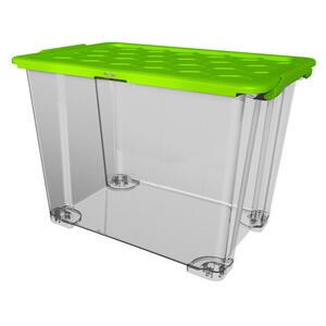 Rotho Box mit deckel  1008205519Ws  Grün