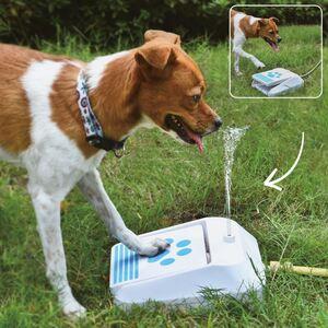 Outdoor-Wasserspender für Hunde mit Push-Pedal