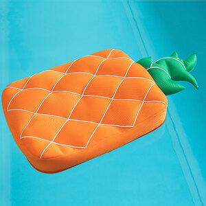 Pool-Buddy Ananas1
