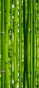 A.S. Creation Panel POP.UP - Bambus - grün - 2,5 Meter