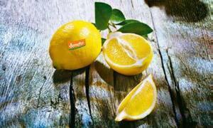 demeter tegut...Bio-Zitronen