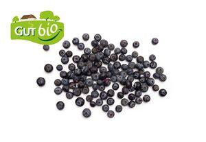 Bio-Heidelbeeren