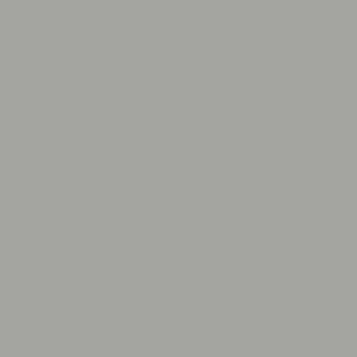 Bild 3 von Baufix Express Deckfarbe dunkelgrau, 2,5 l