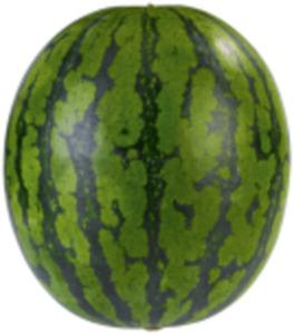 Italien/Spanien Mini-Wassermelonen