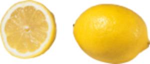 "Südafrika Zitronen ""Lemongold"""