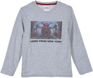 Spider-Man Langarmshirt  hellgrau Gr. 104 Jungen Kleinkinder
