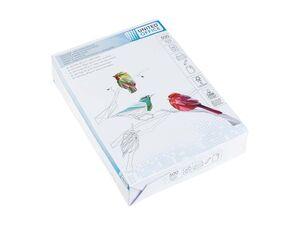 Drucker- und Kopierpapier