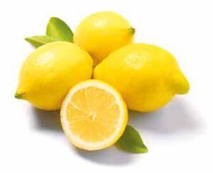 GO BIO Zitronen