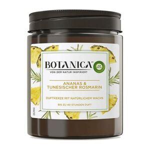 Air Wick Duftkerze Botanica Ananas und Tunesischer Rosmarin 205g
