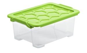 Rotho Aufbewahrungsbox mit Deckel - grün - Kunststoff - 28,3 cm - 16 cm - Aufbewahrung