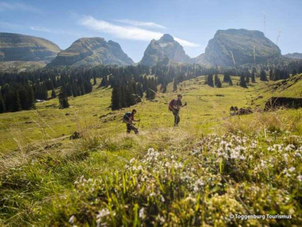 Bild 4 von Appenzell & Bodensee - Schweiz-Standort-Rundreise