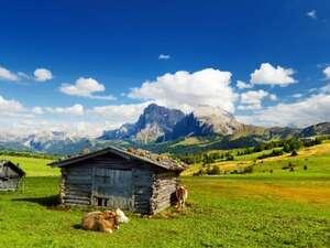 Italien - Südtirol - Dolomiten/Seiser Alm - Trekkingreise