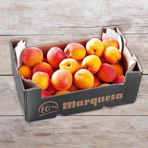 Marquesa Premium Aprikosen