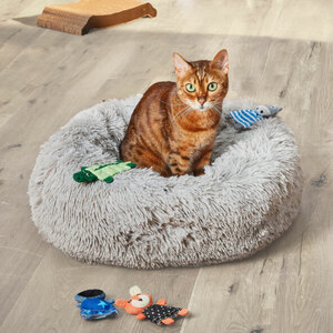 Katzenbett, 50 x 15 cm