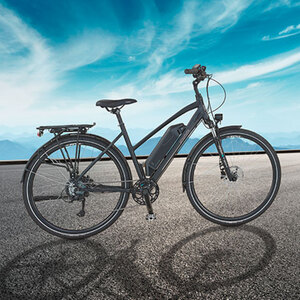 Trekking-E-Bike Damen1