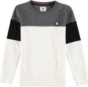 Sweatshirt  grau/weiß Gr. 140/146 Jungen Kinder