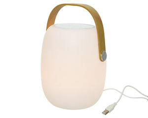 Lumineo Leucht-Lautsprecher