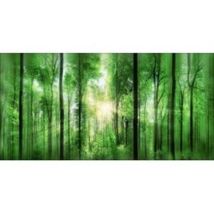 PRO ART Alu-Art Bild FOREST FEELING II 200 X 100 cm