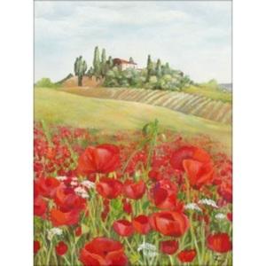 PRO ART Canvas-Art Bild KLATSCHMOHNFELD II 60 x 80 cm mehrfarbig