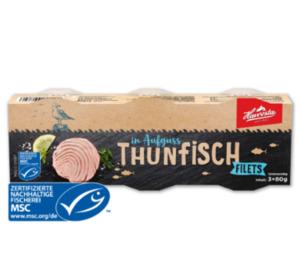 HAWESTA Thunfisch Filets