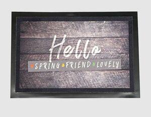 Schmutzfangmatte Hello Spring