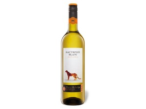 CIMAROSA Sauvignon Blanc Südafrika trocken, Weißwein 2019