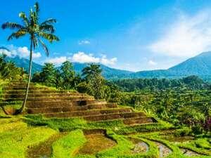 Bali – Rundreise & Baden