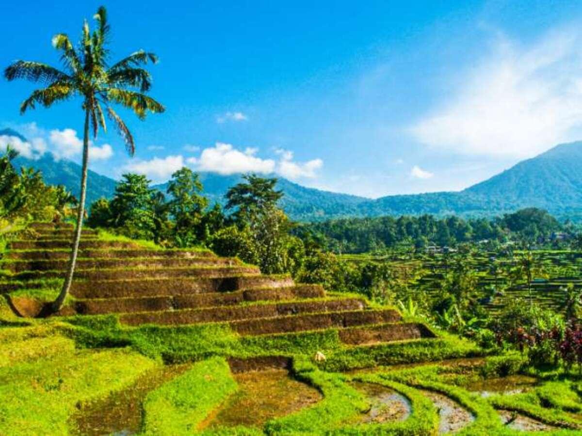 Bild 1 von Bali – Rundreise & Baden