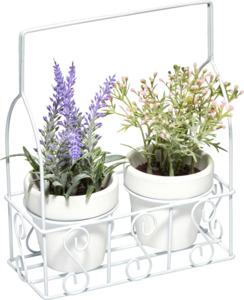 IDEENWELT Deko-Pflanzen im Träger