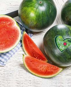 Bio-Wassermelonen