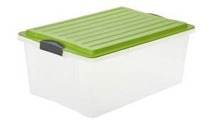 Rotho Aufbewahrungsbox mit Deckel - grün - Kunststoff - 40 cm - 25 cm - Aufbewahrung