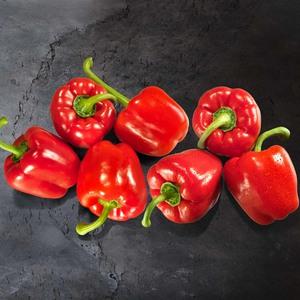 Niederlande Paprika, rot Kennzeichnung siehe Etikett