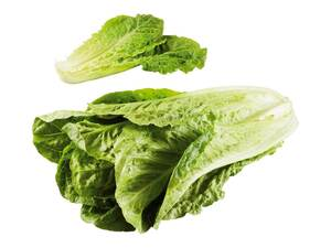Deutscher Romana Salat