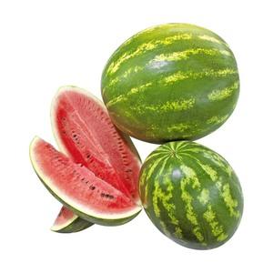 Spanien Wassermelonen