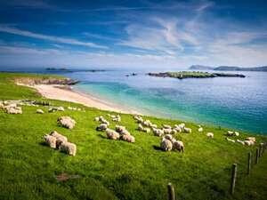 Irland - Rundreise