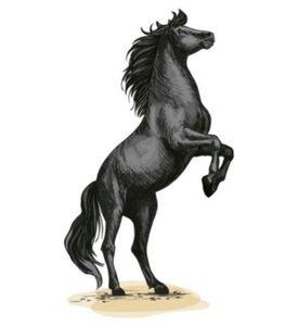 Wandtattoo Pferd in wilder Haltung - Pferdekopf Wandtattoos schwarz Gr. 110 x 200