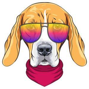 Wandtattoo Hund mit Sonnenbrille Wandtattoos mehrfarbig Gr. 60 x 60