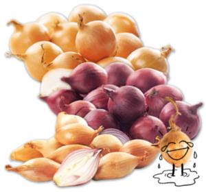 Mind. 20% Rabatt auf alle Zwiebeln