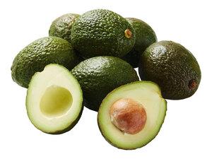 Avocado XXL