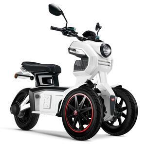 Doohan eGo2 Dreirad Elektroroller 1560W - 45km/h E-Scooter 2 Personen E-Roller 3-Rad LMW Elektromobil EU-Zulassung Weiß
