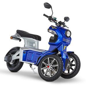 Doohan eGo2 Dreirad Elektroroller 1560W - 45km/h E-Scooter 2 Personen E-Roller 3-Rad LMW Elektromobil EU-Zulassung Blau