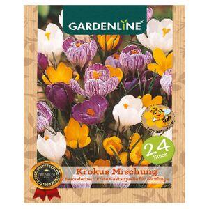 GARDENLINE®  Herbstblumenzwiebel-Spezialitäten